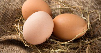 Яйца и здоровое питание