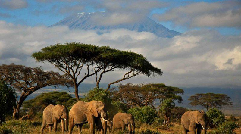 Кения – страна для любителей экотуризма